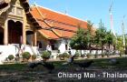 MIN_111 Pigeons_Thailand_s