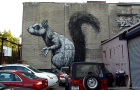 MIN_Week 63 Bkln Street Art_squirrel_s