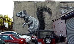 MIN_Week 63 Bkln Street Art_squirrel_s