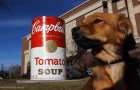 Warhol_soup_can_CSU_Colorado_Whiskey