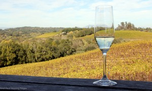 Sonoma (California) – In Another Minute (Week 236)