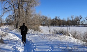 Cross Country Skiing in Fort Collins – In A Colorado Minute (Week 301)