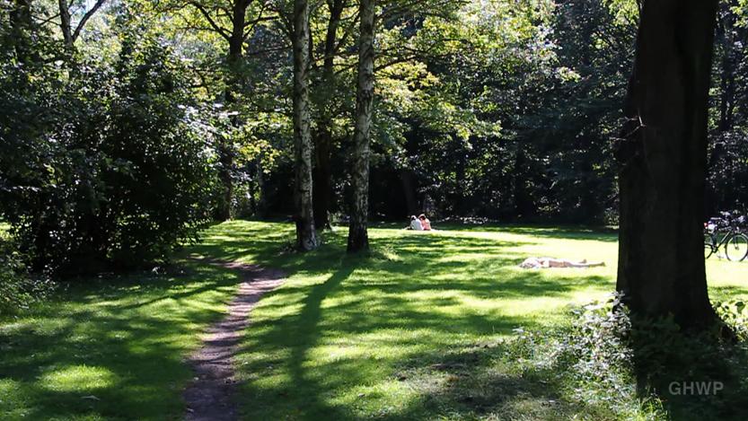 MIN_118 Tiergarten path_s