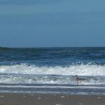 MIN_Week 83 Relaxing Beach