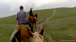 Horseback Riding at Terry Bison Ranch - In A Colorado Minute (Week 212)