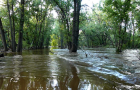 MIN_214 Poudre Trail_flooded_s