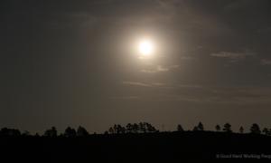 MIN 224_Super Moon Rise_s