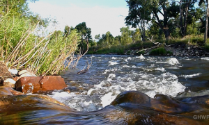 MIN_225 Poudre River Swim_waterfall_s