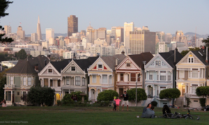 MIN 233_San Francisco_painted ladies_s