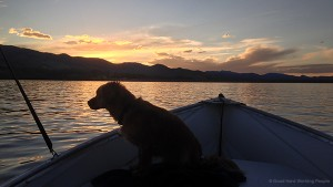 Sunset Cruise on Horsetooth Reservoir - In A Colorado Minute (Week 273)