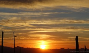 MIN 285_AZ Desert Sunset_s