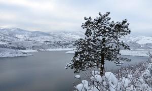 MIN 292_First Snow_s