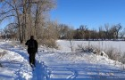 MIN 301_Cross_Country Ski_s