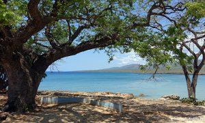 La Boca_Cuba_MIN 322_01_s