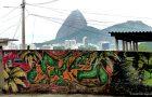 Rio Street Art_MIN 328_02_lion_s